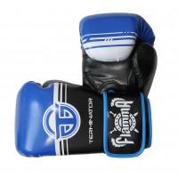 Перчатки для бокса FLAMMA TERMINATOR 2 . 0
