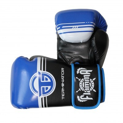 Перчатки для бокса 12 унц FLAMMA TERMINATOR2.0